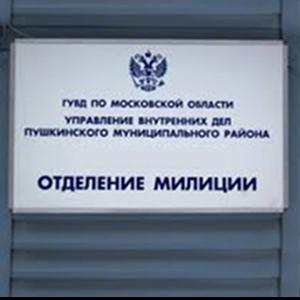 Отделения полиции Новобурейского